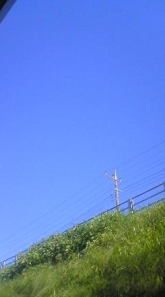 今日も暑そう